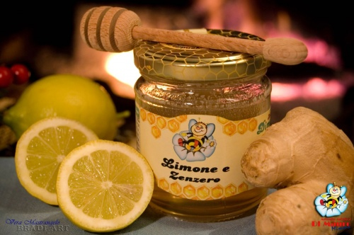 Honey-based and fruit extract food gr.250 Lemon and Ginger