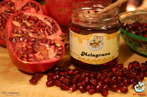Honey-based and fruit extract food gr.250 